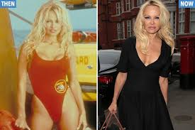 Whatever happened to the Baywatch babes? Playboy, plastic surgery and the  sexy star who broke her NECK